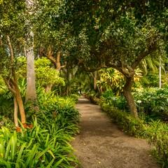 Giardino botanico a Puerto de la Cruz